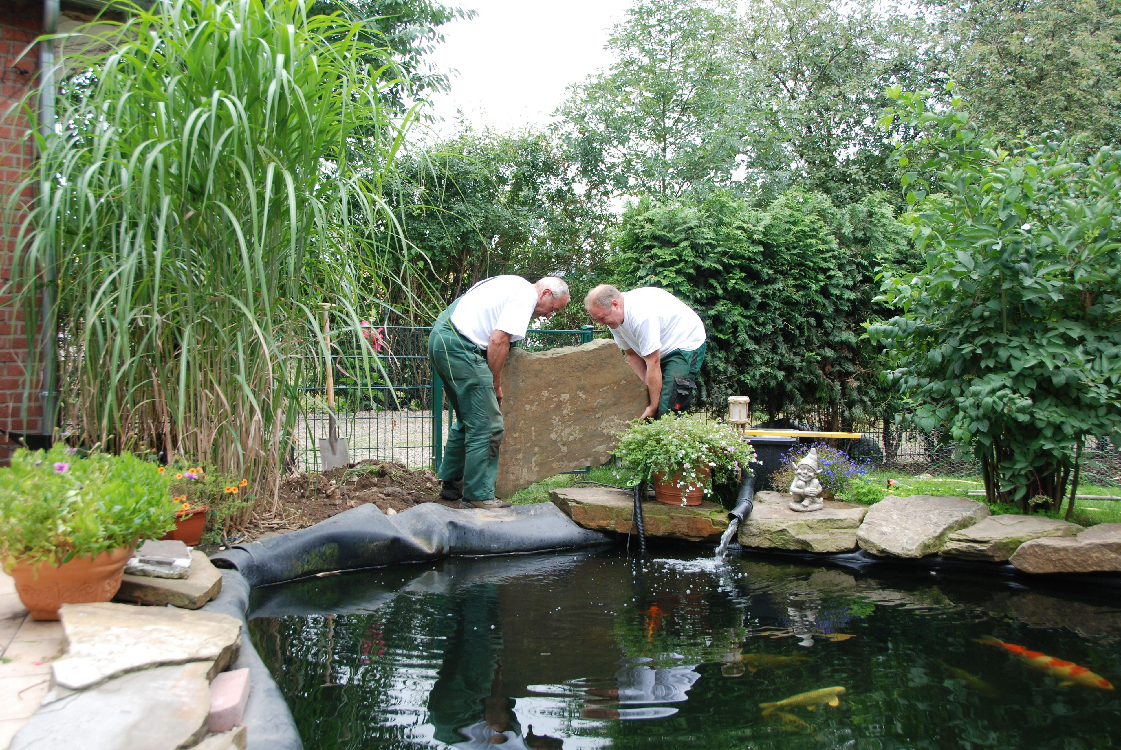 Teichreinigung in moers krefeld essen duisburg for Teich reinigen